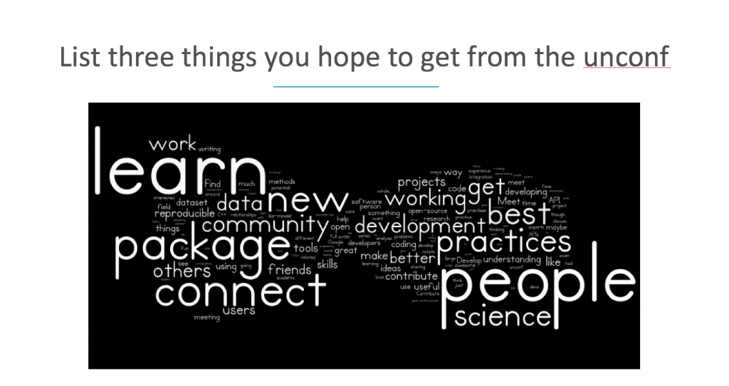 Word cloud of things participants wanted to get from the unconference